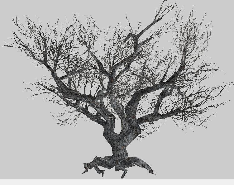 зеленые листья иллюстрации, лист, куст PNG   HotPNG   594x751
